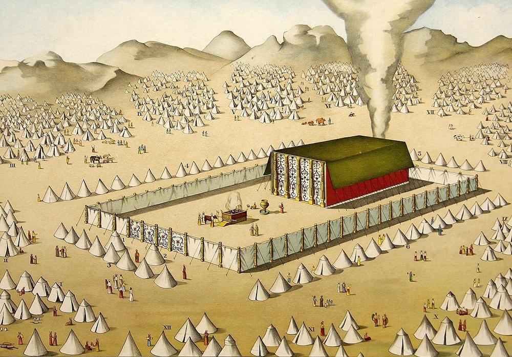 Resultado de imagem para ilustração de terreno de deus