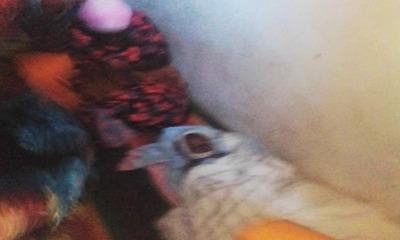 Corpo de Ibrahim, de 6 anos, morto por parentes muçulmanos em Uganda